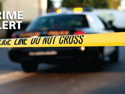 Crime Brief