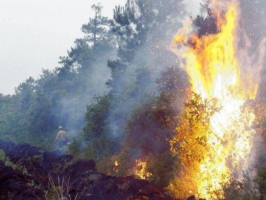 635733514128093684-forest-fire-web