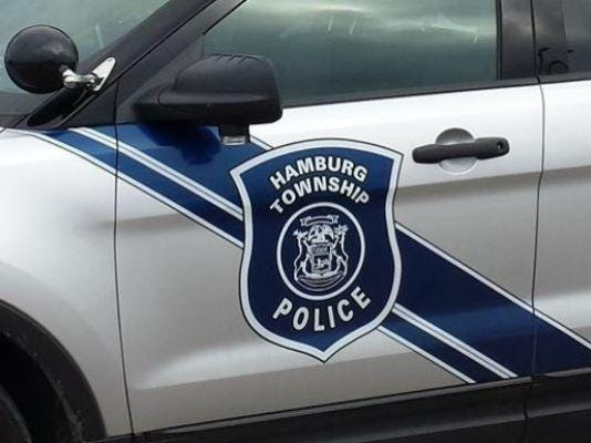 hamburg township car