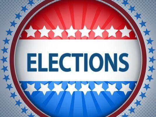 PI Election logo
