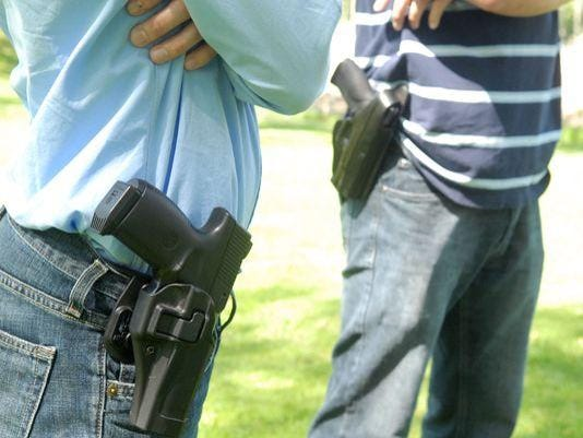 PLY guns in schools