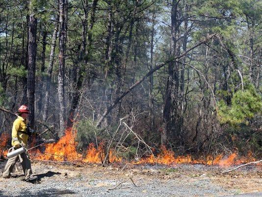 njforestfires-1.jpg