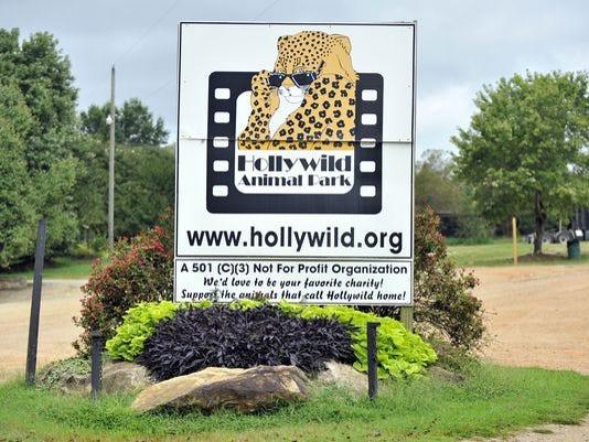 Hollywild.jpg