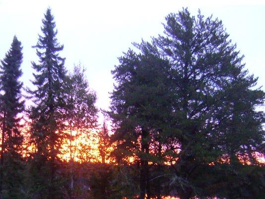 635838744844608260-11.29.15---Sunset-Through-Trees.jpg