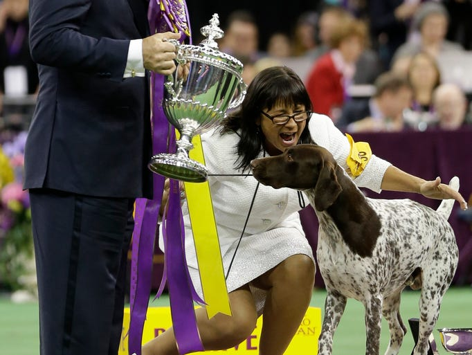 History Of Westminster Dog Show Winners