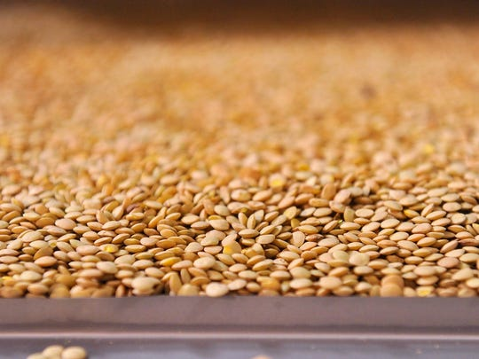 Lentils move through a sorting machine before packaging at the Timeless headquarters in Ulm.