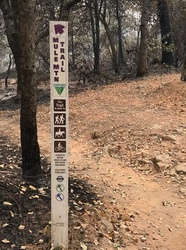 The Mule Mtn. Trail at the Swasey Recreation Area also connects with many other trails in the area and extends 4.3 miles to Mule Mountain Pass.