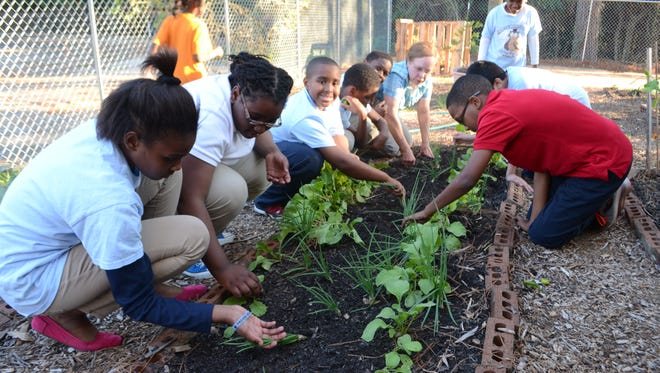 "Twenty-two children are part of the garden club at the Pineville Youth Center. The Good Food Project comes to the center once a week to help the children with their garden. ""I like the club,"" said Kameron Mattocks (third from left). ""It teaches life lessons and how things grow and it builds character."" Kameron also won an essay contest about the center, winning a $25 gift card."