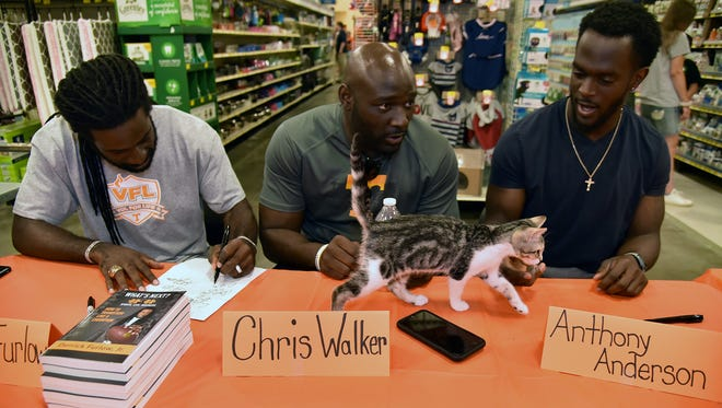 Taco, an adoptable cat, tries to get the attention of former UT football players Derrick Furlow, Chris Walker and Anthony Anderson Saturday July 14, 2018.  A dozen pet adoption groups were on hand at the PetSmart on Morrell Road in Knoxville offering a 10 percent discount on adoptions.