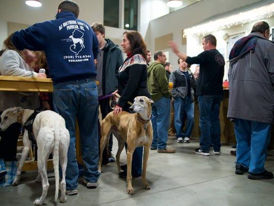 Meet, greet greyhounds PHOTO CAPTION