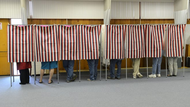 Ottawa County voters will decide on a number of township trustees in Tuesday's election.