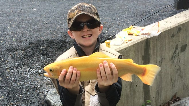 Chase Beidel, 10, caught a 19-inch palomino in the 2016 Chambersburg Noontime Lions Club Trout Derby at Caledonia State Park.