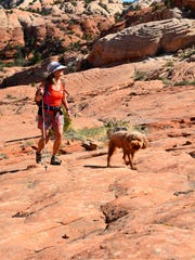 Vickie Honchen with her dog Moki, explore the beauty and wonder of the Red Mountain Wilderness area on BLM public lands in Southern Utah.