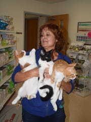 Angela Gipson holds three kittens that were born to a wild cat and are now up for adoption.