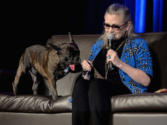 Actress Carrie Fisher with her French bulldog Gary onstage during Wizard World Comic Con Chicago 2016 on August 21, 2016 in Rosemont, Illinois.