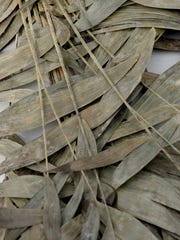 Palm fronds that will be burned at Christ United Methodist Church in preparation for Ash Wednesday.