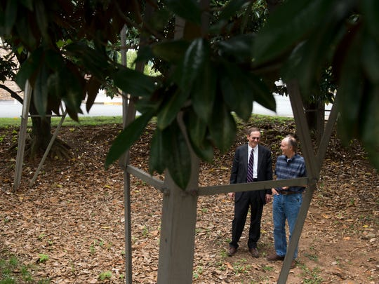 Attorney Donald Vowell, left, and plaintiff Vance Sherwood stand in a grove of magnolia trees beneath a TVA transmission tower on Aug. 1, 2017. U.S. District Judge Tom Varlan ruled that the Tennessee Valley Authority cannot employ their 15-foot rule for chopping down trees along utility lines or transmission lines.