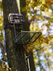 Rodney Markle fell from a tree stand similar to this one in Jackson Township. Tree stands are popular among hunters, allowing them to shoot from off the ground. But neglecting safety precautions can lead to injury or death.