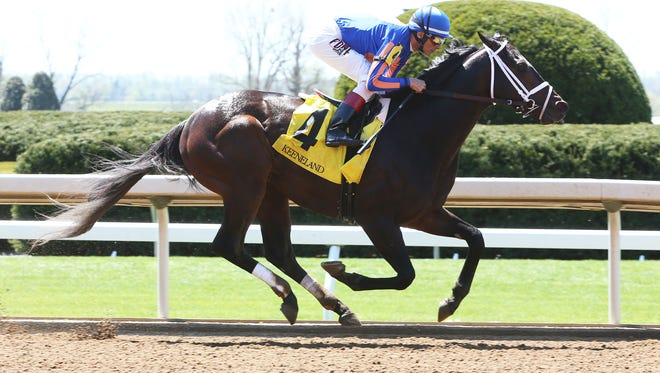 Preakness contender Stradivari rolled to a 14 1/2-length win at Keeneland in his last race.