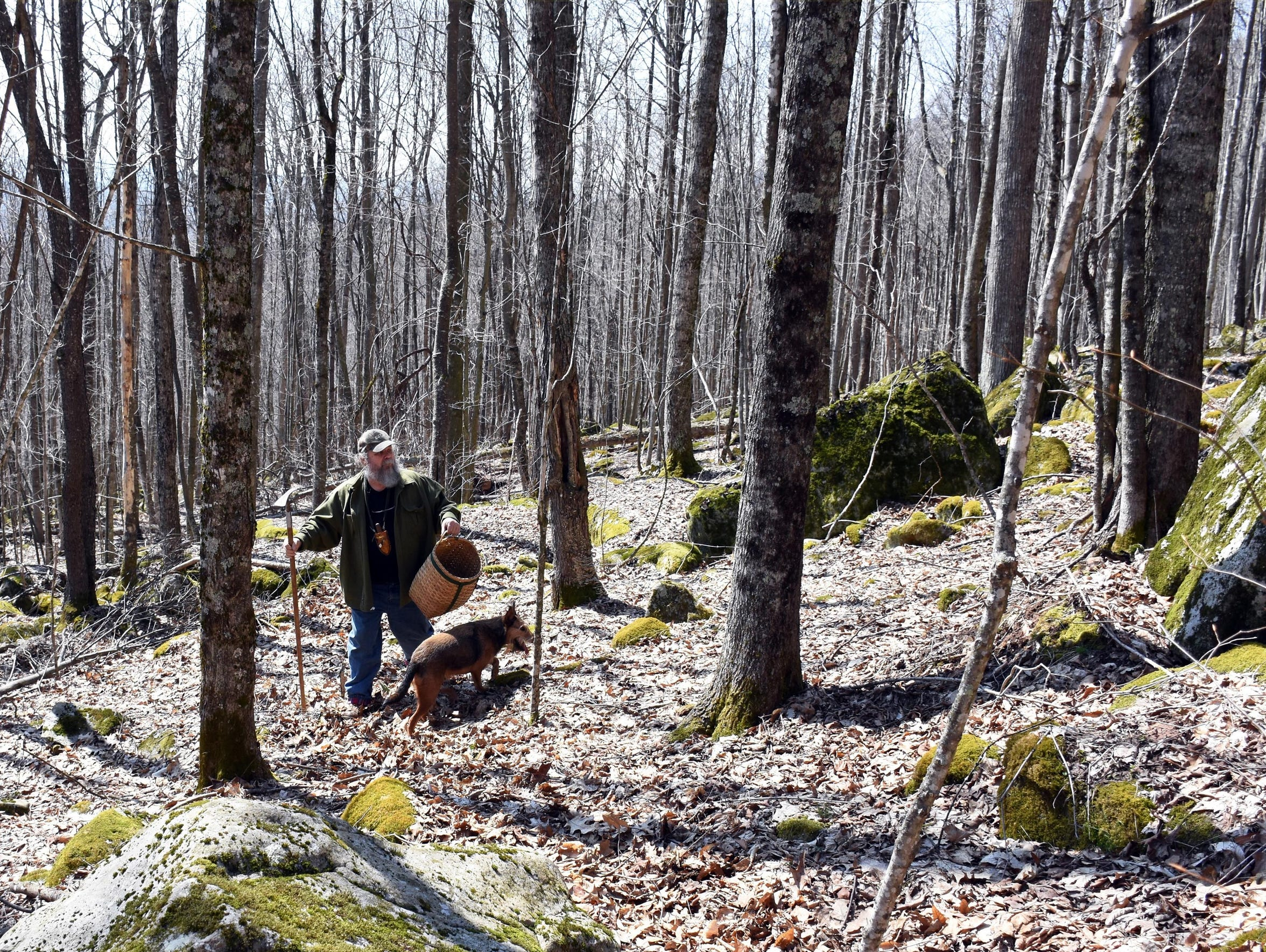 Jay Marion of Verona, Virginia, and his dog Abby foraging