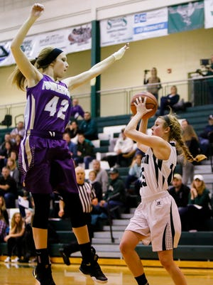 Williamston senior Elana Lycos looks to pass against Fowlerville's Averie Latson Friday, Jan. 13, 2017 at Williamston.  Williamston won 62-33.