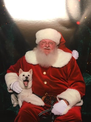 A dog obsessed with her Santa Claus plush toy got the chance to meet the man in red himself at a Florida mall last week.