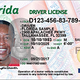 Thousands of Floridians lose driver's licenses for non-driving offenses | Opinion