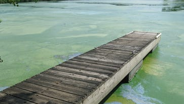 Plan seeks to drown out sea of green on popular Wisconsin River reservoirs by cutting algae-causing pollutants