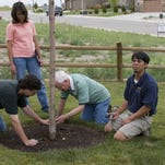 Windsor Town Forester Ken Kawamura, far right, helps make Windsor beautiful by promoting planting and growing healthy trees and other plants.