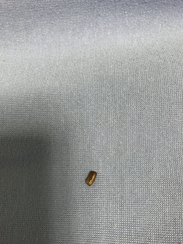 The roach that was in Blake Collins' ear.
