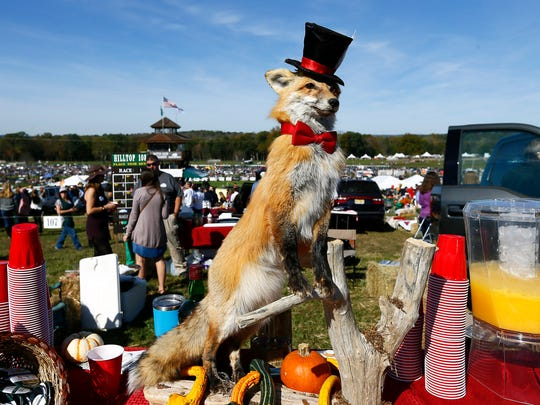 A fox in a top hat stands watch over a tailgate during