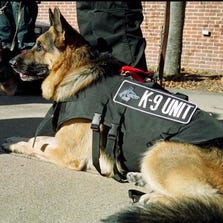 file photo of a police K-9