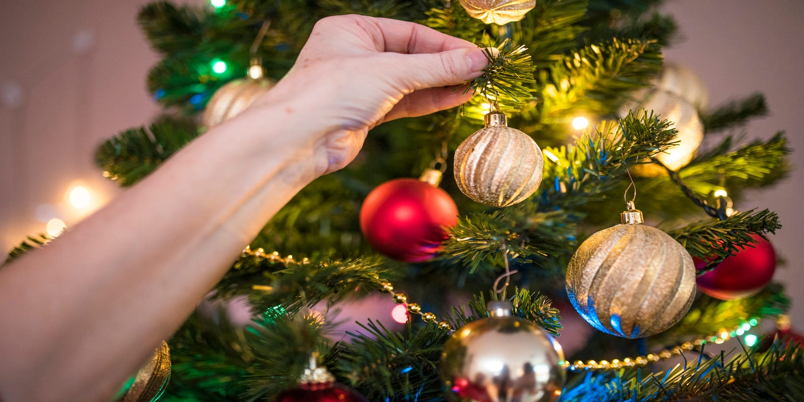 What You Need To Know When Buying A Christmas Tree