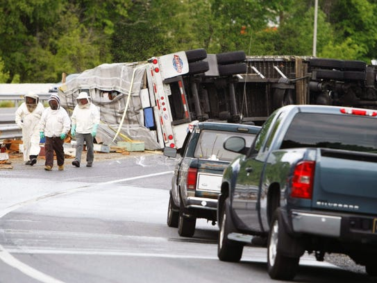 Beekeepers view damage after a truck rollover released