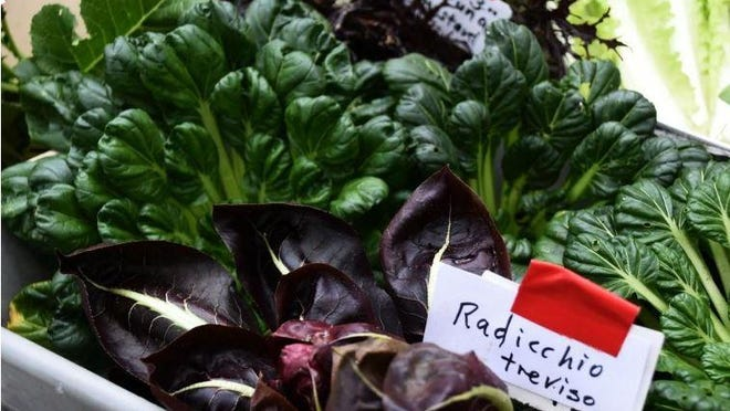One Vox caller wants to shop at grocery stores that require face masks. Shown: Radicchio and a variety of other produce is featured at the weekly Forsyth Farmers' Market.