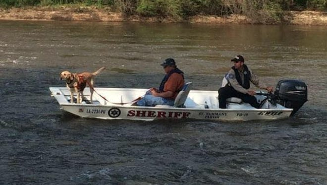Search and rescue teams continue to look for a Louisiana woman missing in the Pearl River Canal since Saturday.