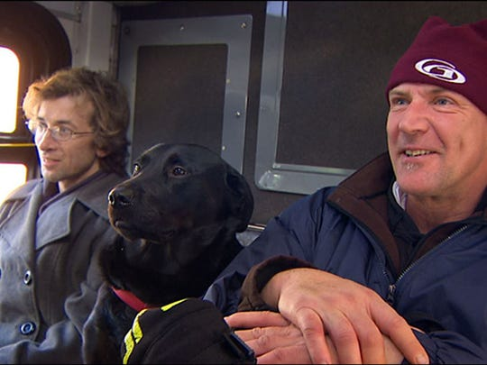 Eclipse, a black Labrador, with owner on bus.