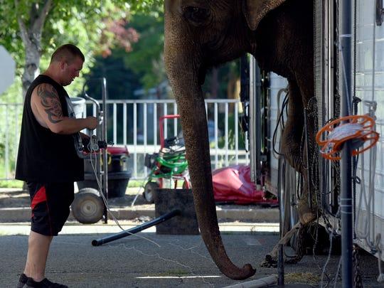 Third-generation elephant trainer Joey Frisco, 33,