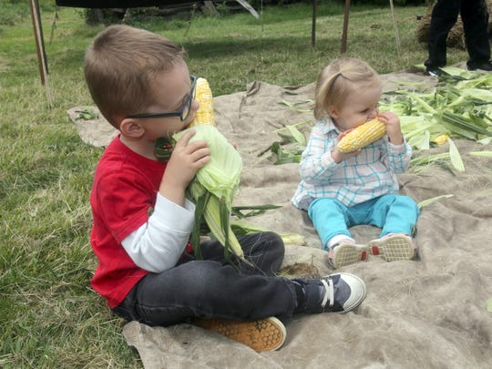 Andrew Fienup, 4, of Valhalla, and his sister Quinn,