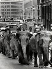 Elephants on Washington Blvd.? It was the Greatest
