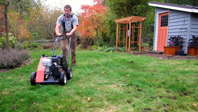 A man aerating a lawn which removes plugs of soil and thatch. This lawn care maintenance improves water, air and nutrient penetration and promotes the growth of healthy organisms in the soil.