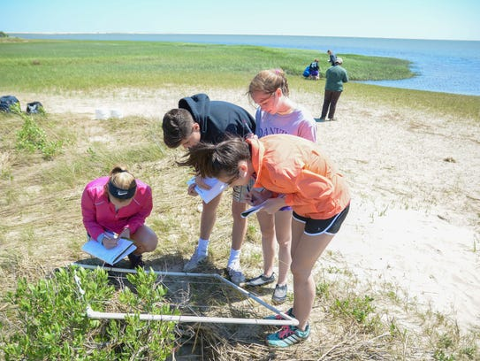 Students take part in a hands-on project at the Chincoteague