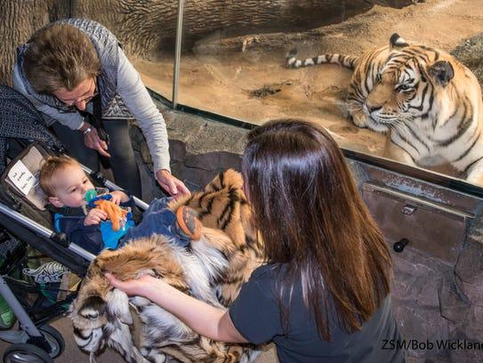 Instructor Molly Del Vecchio shows a tiger pelt to