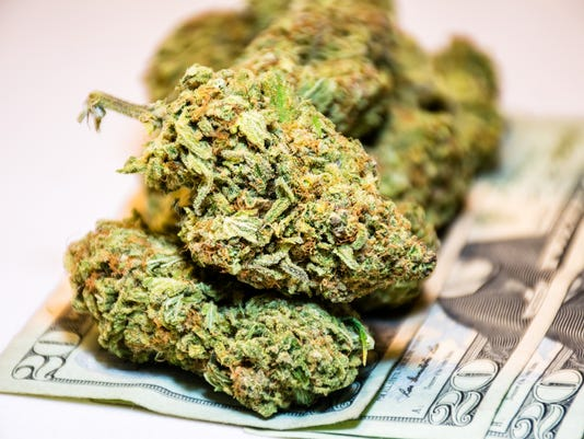 Marijuana Buds Legalized Cannabis on 20 Dollar Bills