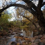 Expect to get your feet wet on Hackberry Spring hike