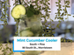 The Mint Cucumber Cooler at South + Pine contains no