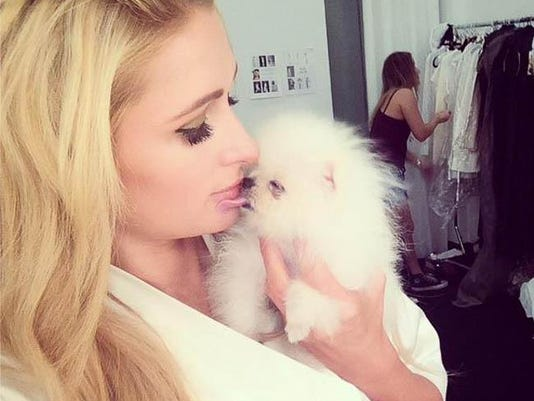 Paris and Prince Hilton