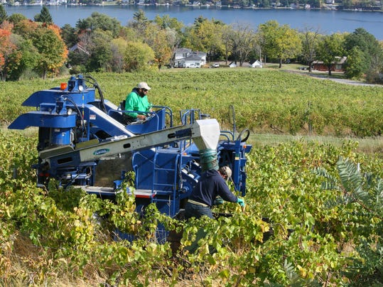 3 regions in New York that produce the best wine