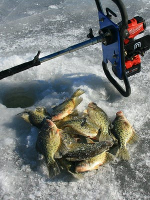 A collection of winter crappies.