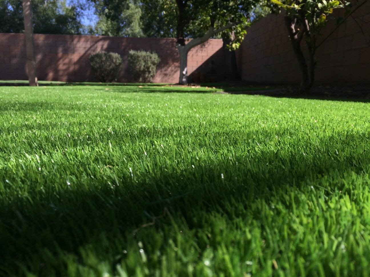 Artificial turf backyard California Small Shouldnt Artificial Grass Should Be More Of Thing In Arizona Installitdirect Artificial Grass Should Be More Of Thing In Arizona Why Isnt It
